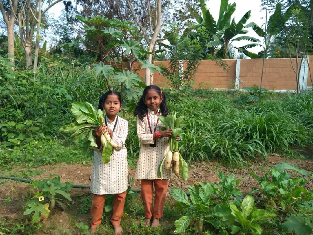 2020-07-05-IshaEducation_Feednutritiousmealstoapoorruralchild_1.jpg